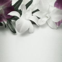 orchids in vintage color style on mulberry paper texture background