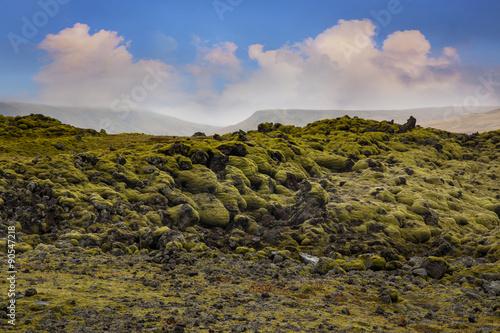 Keuken foto achterwand Noord Europa Moss, Mossy Lava Rocks at Katla Geopark, Iceland.