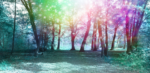 Magical Spiritual Woodland Energy Background - Jade blue colored woodland scene with rainbow sparkles depicting supernatural energy   © Nikki Zalewski