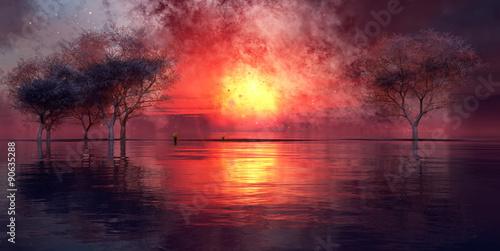 zachód słońca i drzewo