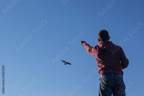 Vogel zähmen