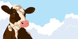 Cow with a flower on a background of blue sky