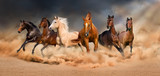 Horse herd run in desert sand storm against  dramatic sky - 90829202