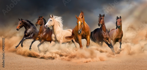 Fototapeta  Horse herd run in desert sand storm against  dramatic sky