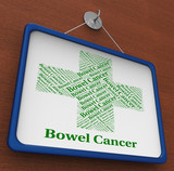 Bowel Cancer Represents Ill Health And Afflictions poster