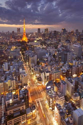 Fototapeta Tokyo, Japan skyline with the Tokyo Tower at night