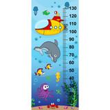 underwater height measure (in original proportions 1:4)