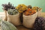 erbe spontanee per la salute del corpo sfondo rustico