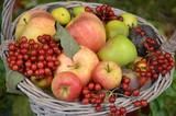 Obstkorb mit Äpfeln und Beeren zum Erntedankfest