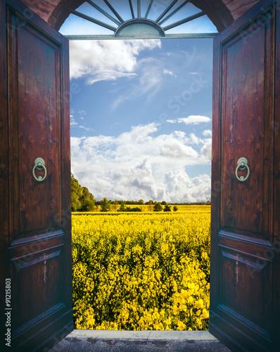 Fototapeta Open door and landscape