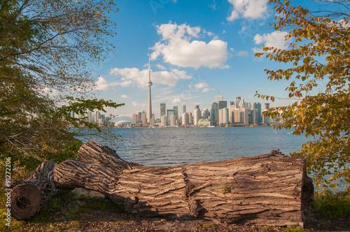 Poster Toronto skyline with seasonal autumn trees