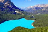 Fototapety Peyto Lake Banff National Park