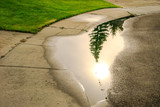 Rainwater puddle with with reflection of the sun poster