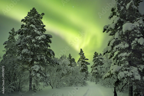 Obraz Aurora borealis over a path in winter landscape, Finnish Lapland