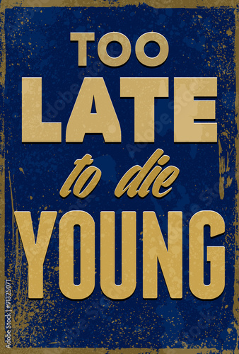 Vintage typography vector illustration with grunge effects. Can be used as a poster or postcard. © larysaray