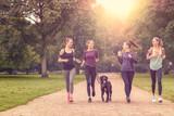 Gesundheitsbewusste Frauen laufen im Park mit ihrem Hund