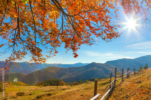 Panel Szklany Morning Autumnal Landscape - yellow leaves over mountains