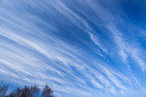 Long cirrus clouds skyscape