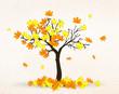 Obrazy na płótnie, fototapety, zdjęcia, fotoobrazy drukowane : autumn maple tree