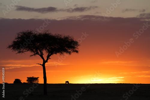 Plakát, Obraz Masai Mara západu slunce
