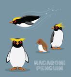 Macaroni Penguin Cartoon Vector Illustration