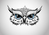 Owl - Guardian of the night