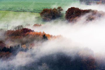 Foggy woods and fields © Peter de Kievith