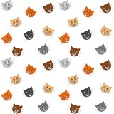 funny cats background