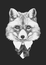 Portret Fox w kolorze. Ręcznie rysowane ilustracji.