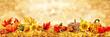 Hintergrund Herbstkarte - 91617654