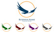 eagle, hawk, phoenix, vector, logo, design,