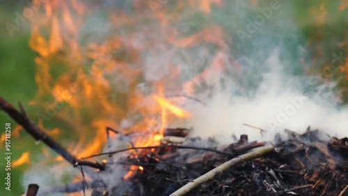 In de dag Vuur / Vlam Ashes and flame on burning grass and branches in a fire
