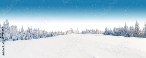 Winter snowy landscape - 91789830