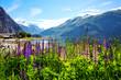 Obrazy na płótnie, fototapety, zdjęcia, fotoobrazy drukowane : mountain landscape