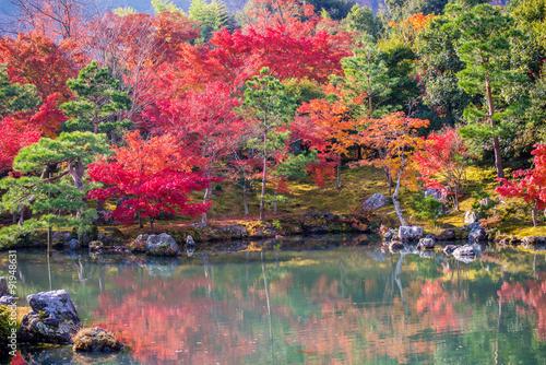 Panel Szklany Japanese garden during falling season