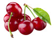 Cherry. Berries isolated on white background