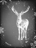 Fototapety Deer