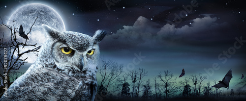 Halloween Scene With Owl And Full Moon
