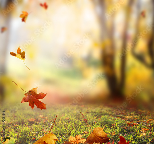 In de dag Honing Falling Autumn Leaves background