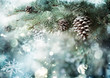 Obrazy na płótnie, fototapety, zdjęcia, fotoobrazy drukowane : Fir Branch With Pine Cone And Snow Flakes