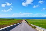 海が見えるサトウキビ畑と農道と青空