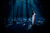 Elven girl with sword at night forest poster