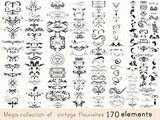 Fototapety Set of vector calligraphic elements and page decorations
