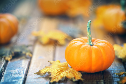 Plagát Autumn pumpkin background