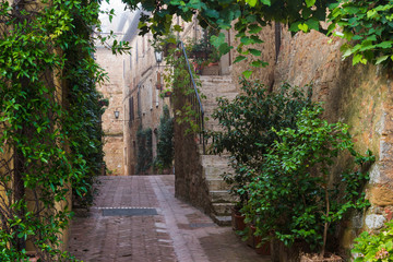 Brick streets of sandstone with green plants in Tuscan village,