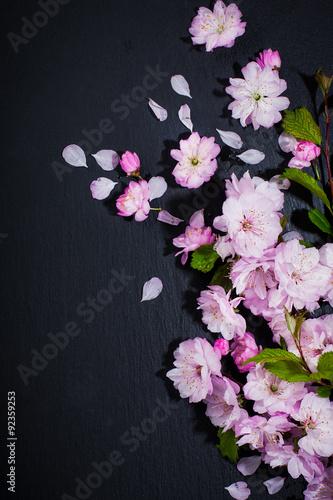 Foto op Plexiglas Spa Spa concept with flowers of almond