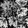 Monochrome seamless pattern of abstract flowers and leaves.