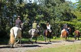Fototapety paseo a caballo 8580-f15