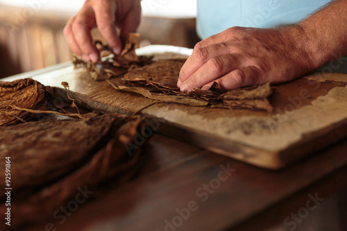 Poster Making tobacco cigars in a typical farm in Vinales, Cuba
