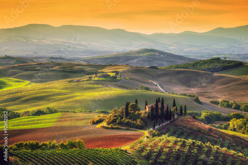 Poster, Tablou Tuscany landscape at sunrise. Tuscan farm house, vineyard, hills.